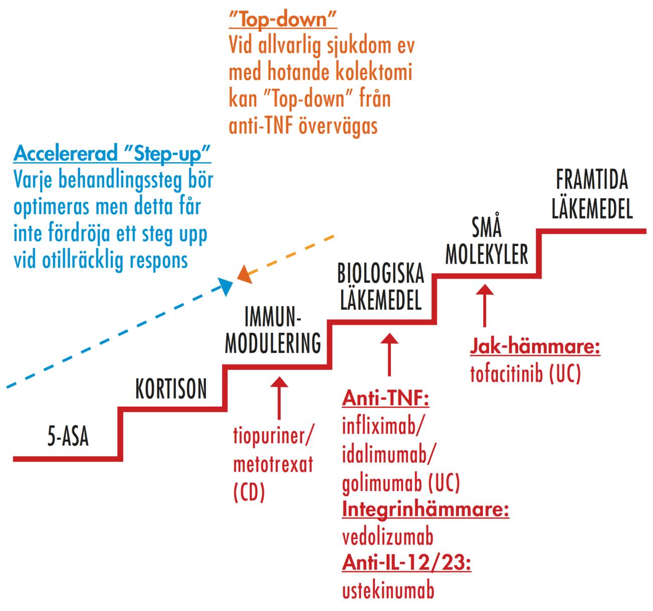 Figur 4. Medicinsk behandling vid IBD – behandlingstrappan.